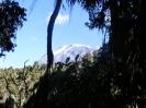 Afrika - Kilimanjaro - 5895 m